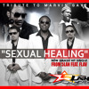 SEXUAL HEALING KOMPA VERSION 5LAN FEAT FLAV mp3