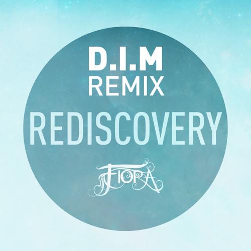 Rediscovery (d.i.m. Remix)