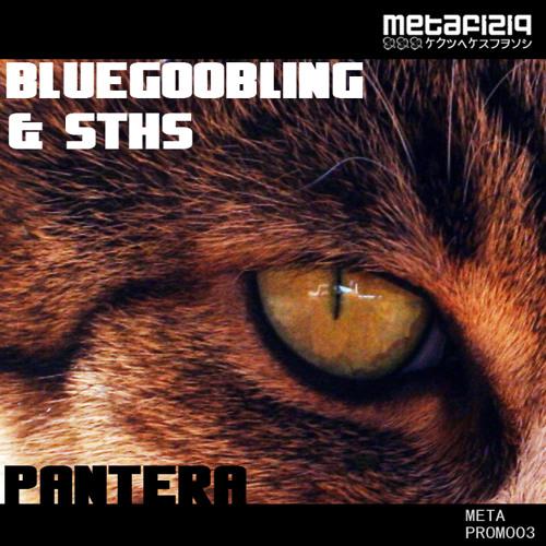 Bluegoobling & Sths - Pantera (METAPROMO03)