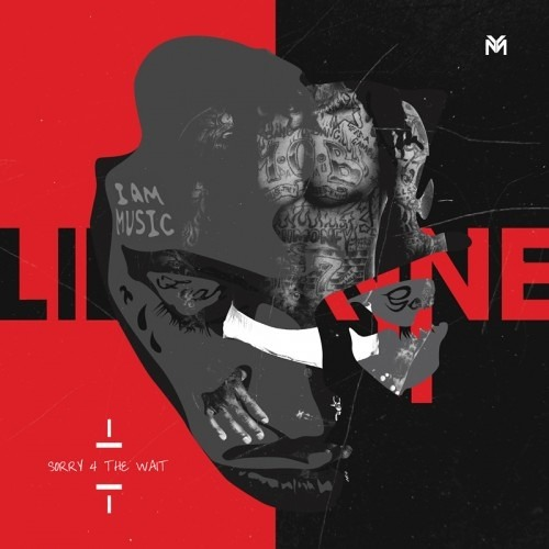 Lil Wayne feat. Adele - Rolling in the Deep / Sorry 4 the Wait