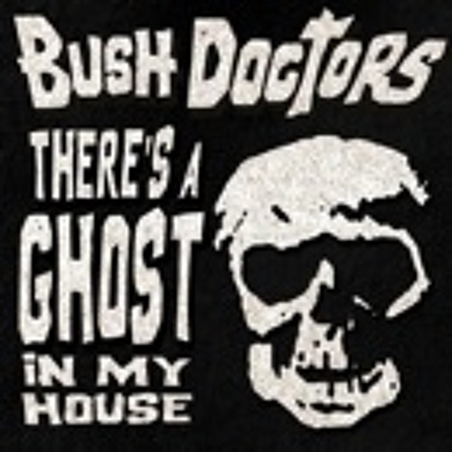 Bush Doctors - There's A Ghost In My House