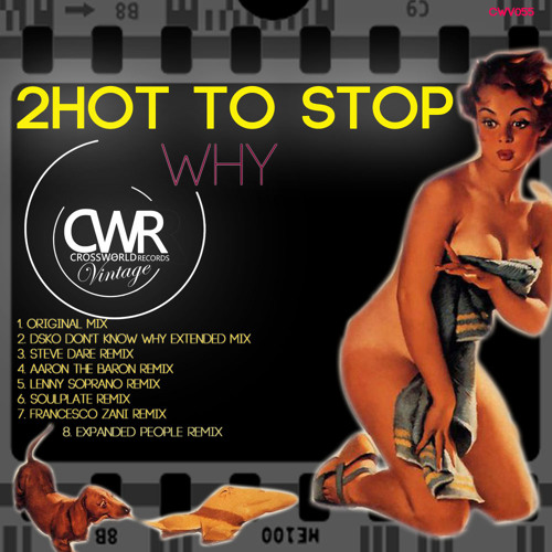 2 Hot 2 Stop - Why (DSKO Don't Know Why Extended Mix) [cwv055]