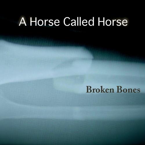 A Horse Called Horse - Broken Bones