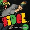 Fidel Nadal - Luz Y Compania (Remix) Portada del disco