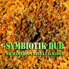 Symbiotik dub feat. Nesta Talmadge by MrMamadou the PiArt