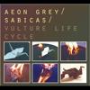 Aeon Grey - Sabicas - Disguised