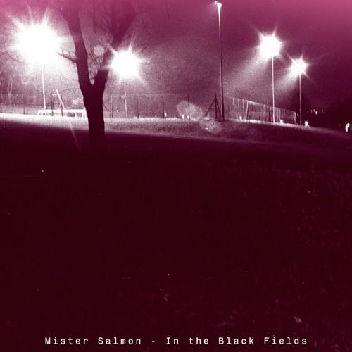 In the Black Fields