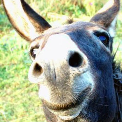Crux July mix (you donkey)