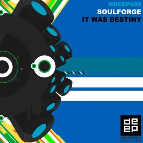 Soulforge - It Was Destiny (Luiz B Remix)