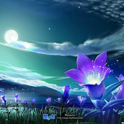 Moonbeam (Starry Eyed Remix)