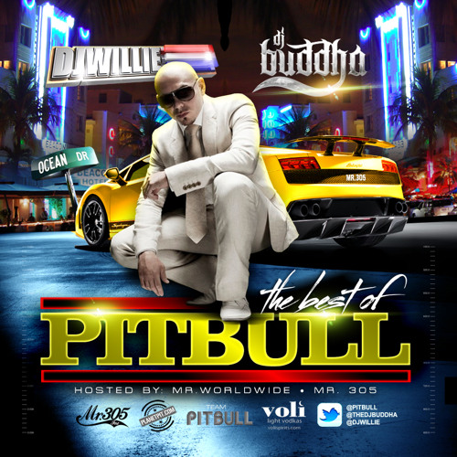 DJ WILLIE & DJ BUDDHA - BEST OF PITBULL OFFICIAL MIXTAPE