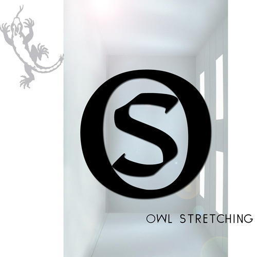 Owl Stretching - The Lizard 2011