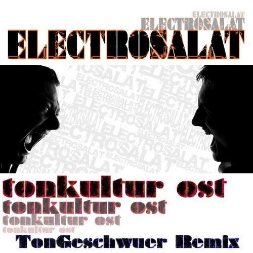 EleCtroSalat - Tonkultur Ost (TonGeschwuer Remix)
