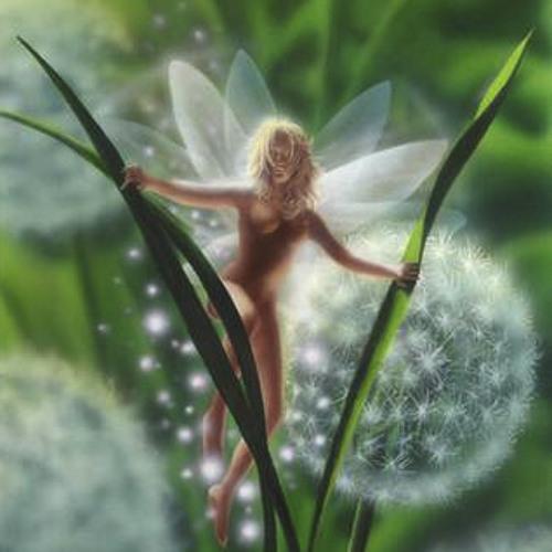 Dom Bloch - Fairy Transformation