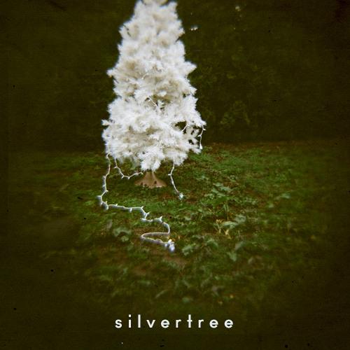cold_elf / Silvertree