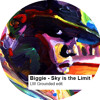 Biggie - Sky is the Limit (LW grounded edit)
