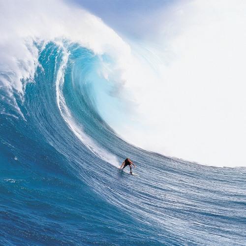 The Wave - Célomusic