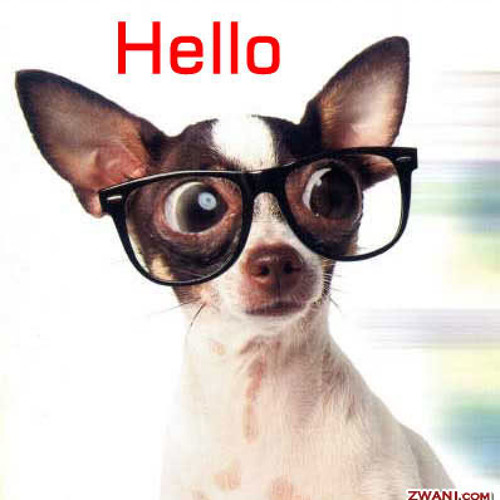Hello (ReMakE)