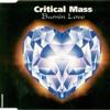 Critical Mass : Burning Love (rave radio edit)
