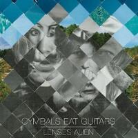 Cymbals Eat Guitars - Definite Darkness