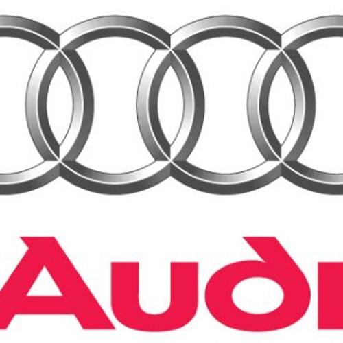 Audi Nepravilno Parkirane