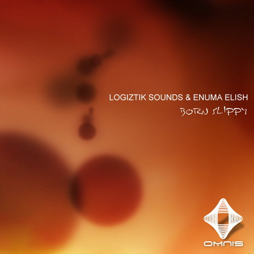 Born Slippy (Logiztik Sounds & Enuma Elish Instrumental Mix)