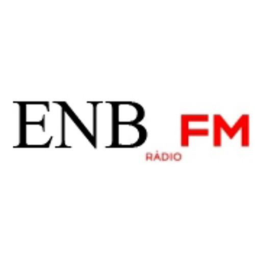 EMONOIZBOYZ live at Pohoda_FM radio show
