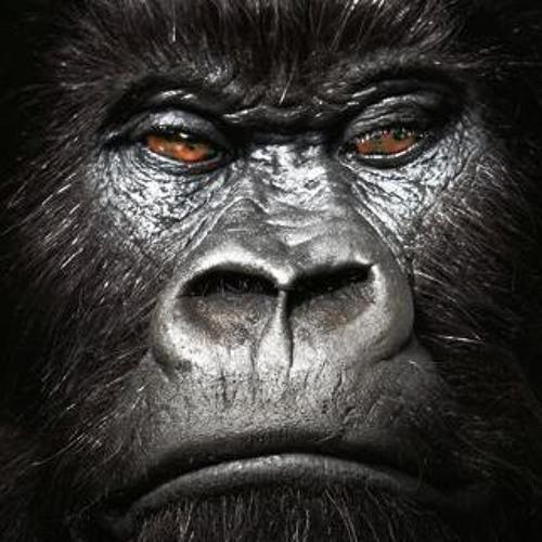 KARA BOGA (basspenetrators) - Bare-Knuckle Dubstep Gorilla Mixtape Vol.1