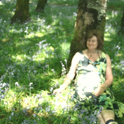 Dedication, sung live by Sarah Barry, harp Seána Davey, composer Claire Roche