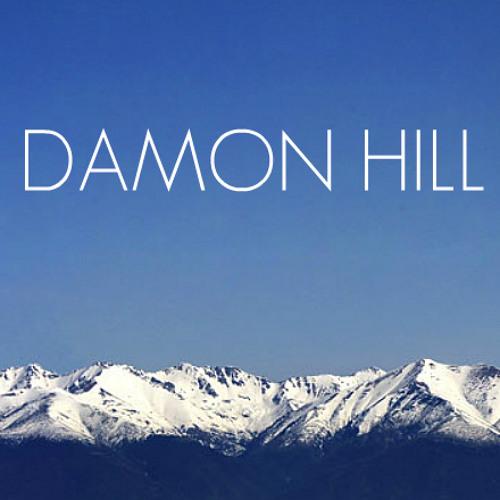 Damon Hill 2011
