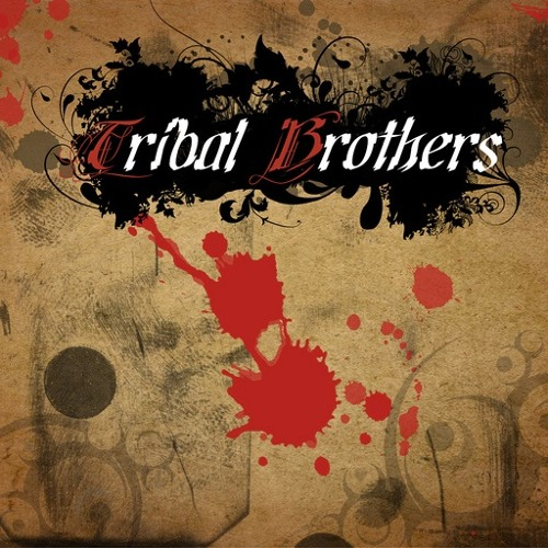 Tribal Brothers - Everything The Flow