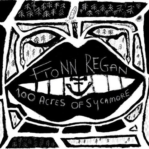 Fionn Regan - Dogwood Blossom