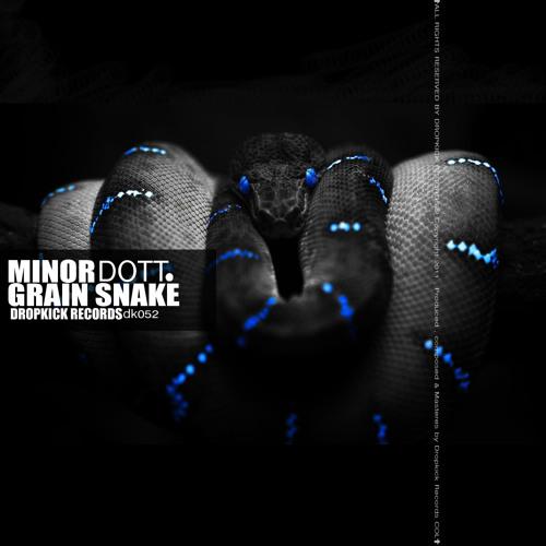 Drum Balls_MinorDott (Original Mix)