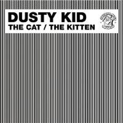 dusty kid - the cat crookers remix