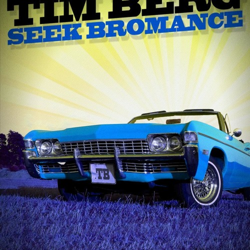 Tim berg - Seek Bromance ( Daniel Remix ) 2011