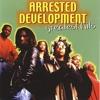Arrested Development - Everyday People - Choobz Remix