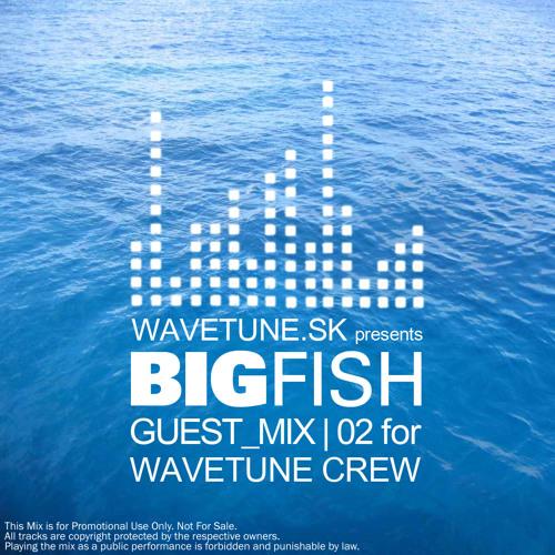 Bigfish - Wavetune crew Guest Mix_02
