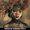 HOUSE OF AFREAKA VOL II- DJ umB - LEO GRINI