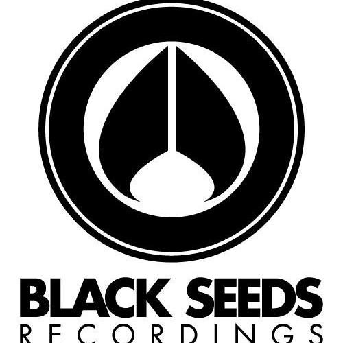 Descent & Halogen - Suspension [Blackseeds Recordings]