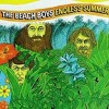 """""""Don't Worry Baby"""" - The Beach Boys (vinyl)"""