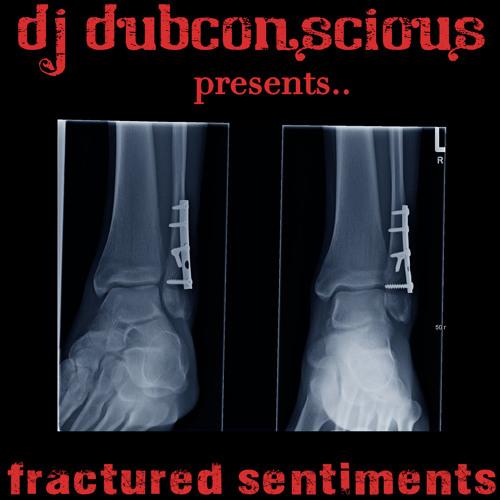 """Fractured Sentiments"" - Shambhala 2011 Promo Mix"