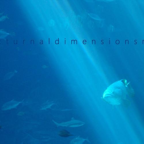 Chelonian - nocturnaldimensionsmix