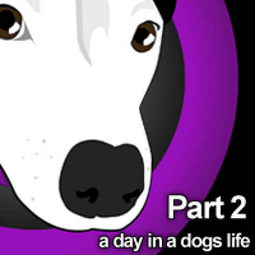 A Day In A Dogs Life - Stretford Dogs Club 2011 - Unleashed - PART 2