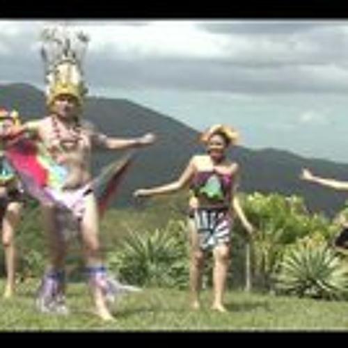 La Cumbia Induhuhu (SebCat's Rebel Up! Rebajada refix)