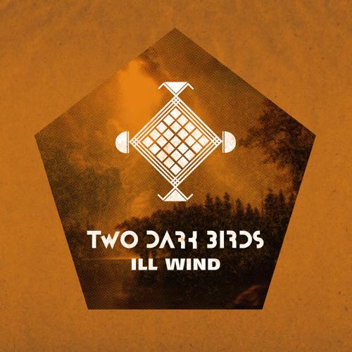 Two Dark Birds: Ill Wind