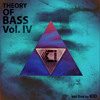 KID - Theory of Bass IV - DOWNLOAD link mp3
