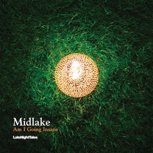 """""""Am I Going Insane"""" - Midlake (vinyl)"""