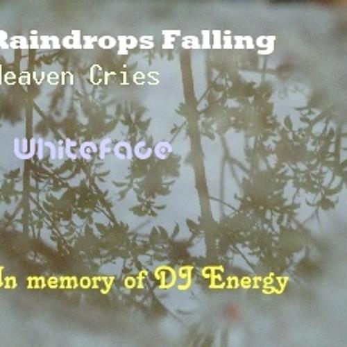 Raindrops Falling (Heaven Cries - In Erinnerung an DJ Energy)