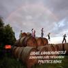 IZ - Somewhere Over The Rainbow - (Pyrotec's Remix)