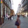 Ciudad polifonica(entomusicologia urbana)
